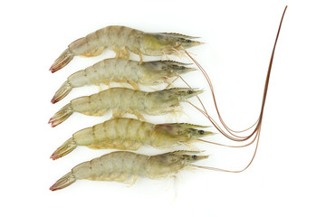 Raw shrimp isolated on white background