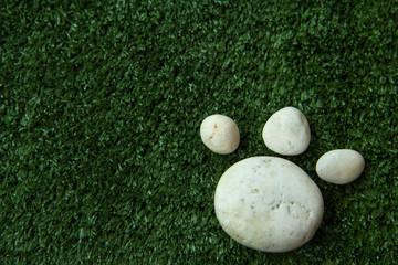 dog's paw made of pebble stone on green grass