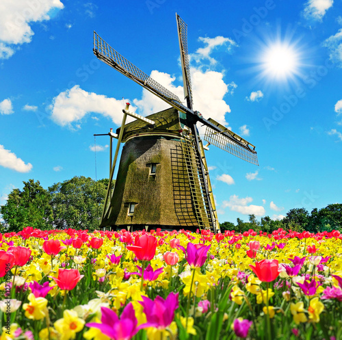 Gre aus holland greeting from the netherlands stock photo and gre aus holland greeting from the netherlands m4hsunfo