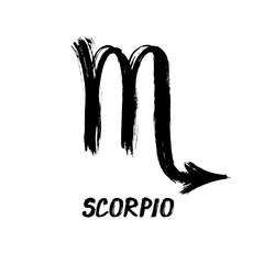 Grunge Zodiac Signs - Scorpio - The Scorpion