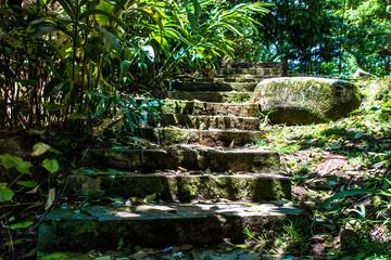 Wanderweg mit Steintreppe