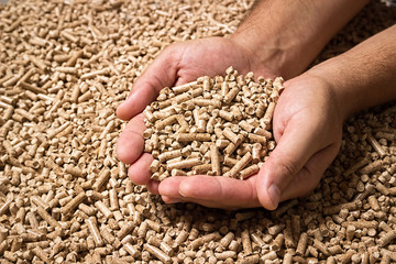 Wood pellets in the background. Biofuels. Cat litter. Man's hands.