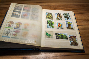 stamp collecting 10
