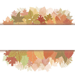 Autumn banner leaf
