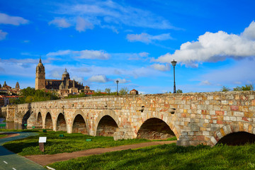 Salamanca skyline and roman bridge on Tormes