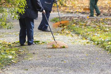 Women Gardener raking fall leaves in city park