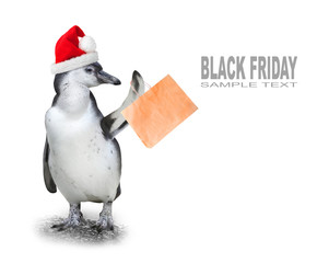 Funny penguin with santa's cap and shopping bag going to supermarket in Black Friday for low cost shopping.