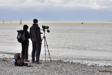 Deux randonneurs ornithologues observent la nature et les oiseaux migrateurs en baie de somme