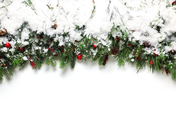 Christmas branches covered in snow