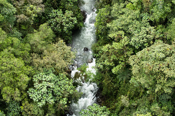 Tropical rainforest from above in Mindo, Ecuador