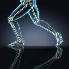 X-ray Running Legs