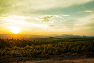 Wall Mural - Sunset Over Valley in Mpumalanga South Africa