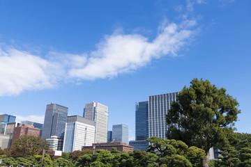 東京都市風景 丸の内 大手町 高層ビル群 緑 青空 コピースペース
