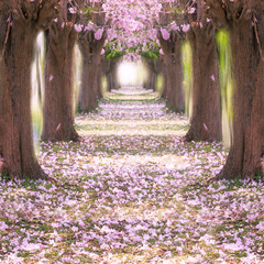 Romantic tunnel.
