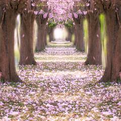 Romantic tunnel.