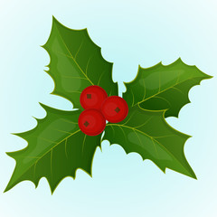 Christmas holly berry in simple cartoon style. Vector illustration. New Year Collection.