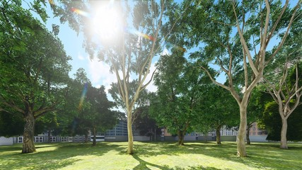 Green city park in sunny and beautiful summer day 3d rendering