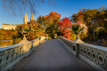 Fall in Central Park at The Lake with the Bow Bridge. Sunrise view with colorful Autumn foliage in the Upper West Side. Manhattan, New York City