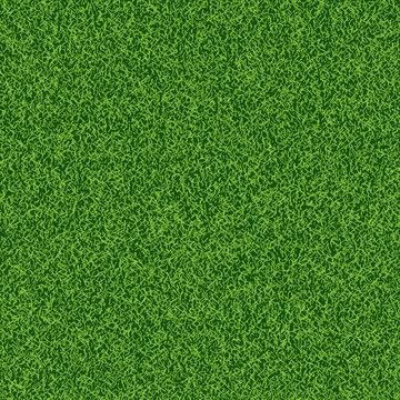 Green grass seampess texture - summer background