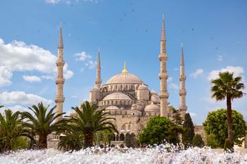 Blue Mosque Sultanahmet Camii in Istanbul, Turkey