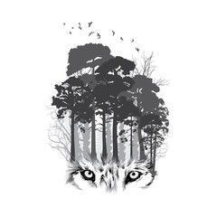 Wolf silhouette on forest background