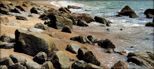 stony beach landscape