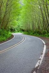 Two Lane Curve Road 2