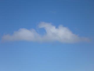 Cumulus Wolke