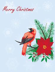Vector Christmas Bird