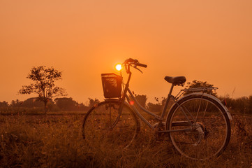 Landscape of field with retro bicycle and sunset background