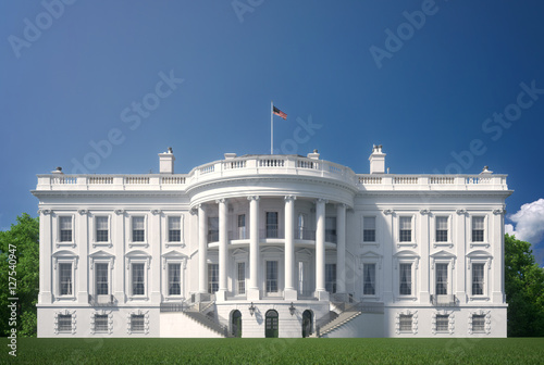 Wall mural White House Clear View