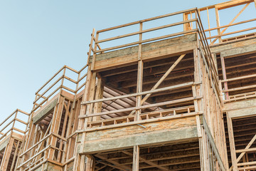 Structure of Wood in Construction