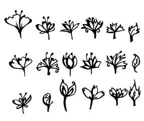 Set of flower doodle sketch eps10