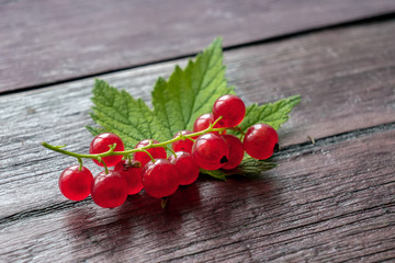 Closeup red currant berries on wooden table