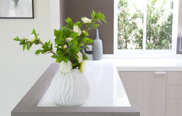decorative vases and plant on countertop at home