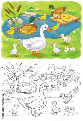 Cute Farm Animals Goose Duck With Ducklings Coloring Book Page