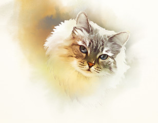 Cute cat. Watercolor portrait of a cat. Drawing of a cat with blue eyes executed in watercolor. Good for print T-shirt. Hand painted watercolor cat illustration. Art background, banner for pet shop.