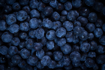 Blueberries - Blueberry