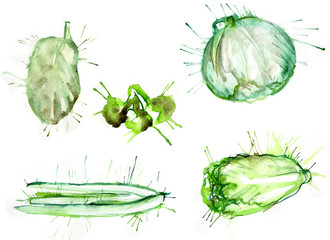 watercolor blots set of vegetables