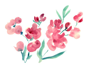 Red flowers on white background, ink illustration in oriental style, Asian watercolor painting