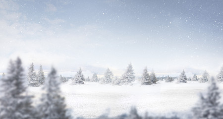 snow and winter landscape panorama