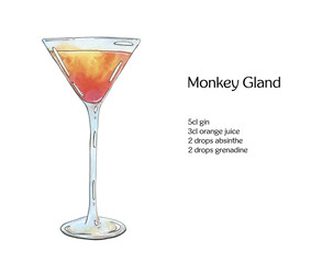hand drawn watercolor cocktail Monkey Gland on white background