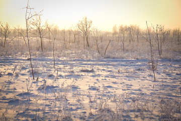 Зимний пейзаж на закате солнце
