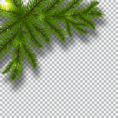 Green branches of a Christmas tree on a checker background. Corner with shadow. Christmas decorations. illustration