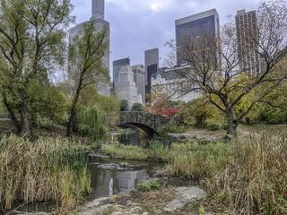 Fototapeten New York Gapstow bridge Central Park, New York City