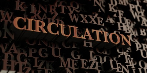 Circulation - Wooden 3D rendered letters/message.  Can be used for an online banner ad or a print postcard.