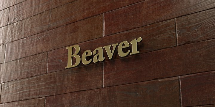 Beaver - Bronze plaque mounted on maple wood wall  - 3D rendered royalty free stock picture. This image can be used for an online website banner ad or a print postcard.