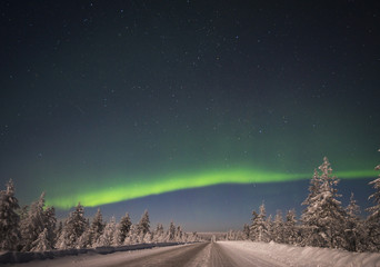 Winter night landscape with forest and polar northern light.