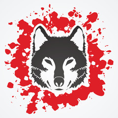 Wolf face front view designed on splash blood background graphic vector.