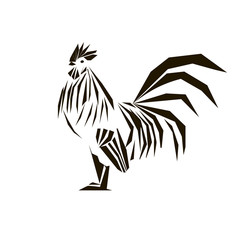 Cock with different colors on white background